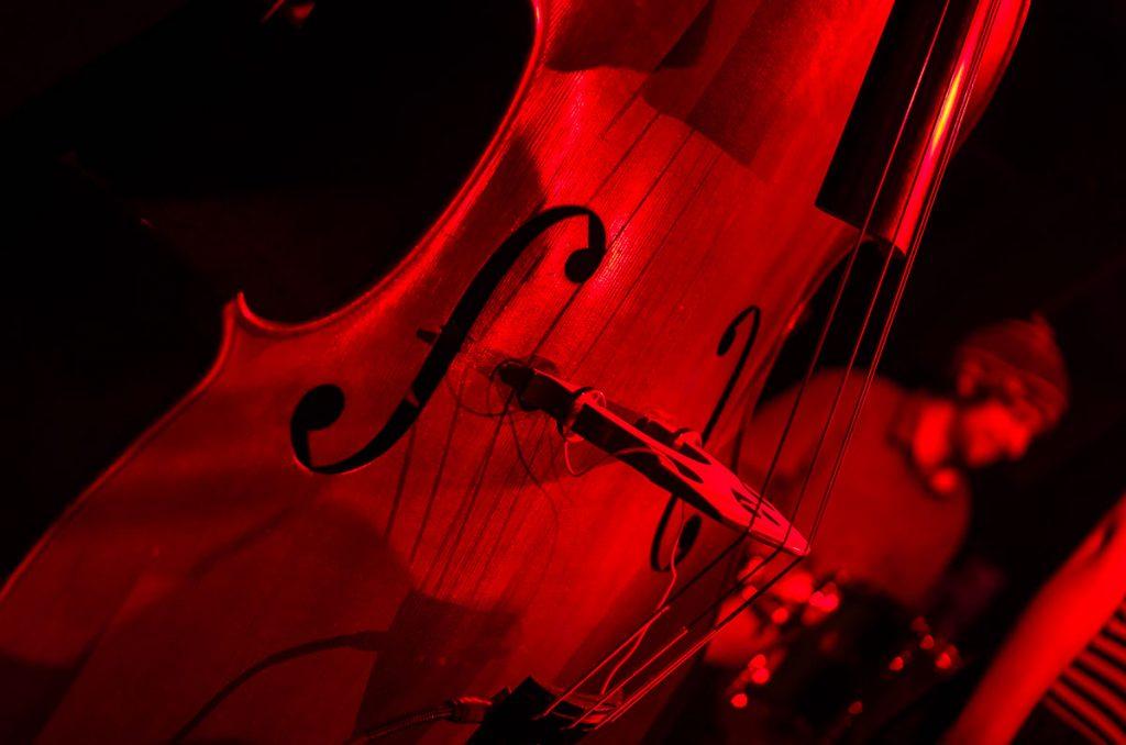 016_Konzertfotograf_Reineke_Fuchs