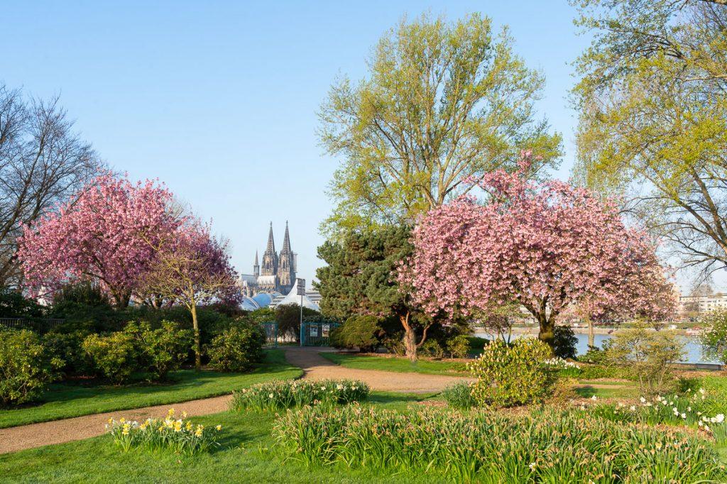 861_Rheinpark
